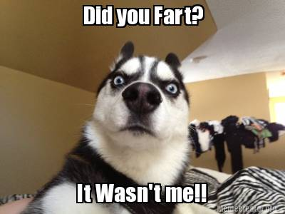 Meme Creator Funny Did You Fart It Wasnt Me