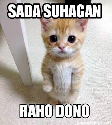 Cat Memes Break