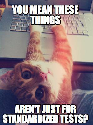 Cat  Standardized Testing