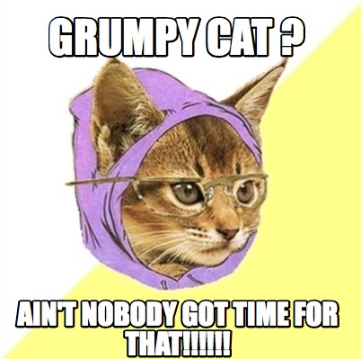 Grumpy Cat Meme Videos