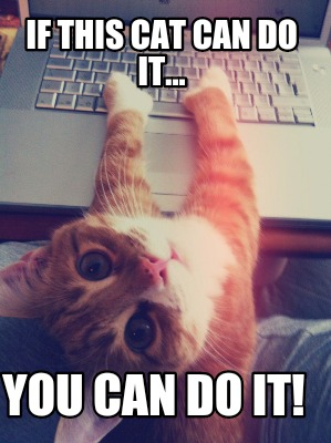 You Can Do It Cat Meme Meme Creator - If this...